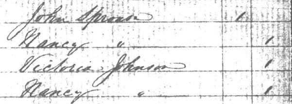 1856 US Census for Nancy Reddick Greer Johnson Sprouse